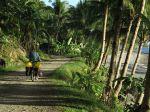 Südliches Sibuyan