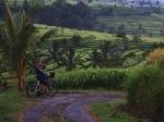Biking Bali